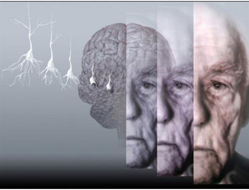 L'OMS posa en marxa l'Observatori Mundial de la Demència