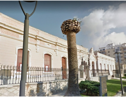 L'Ajuntament d'Amposta demanarà un crèdit de 2,5 MEUR per construir el nou casal de la gent gran
