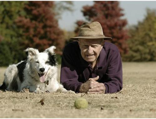 La gente mayor de Viladecans fomenta el civismo paseando sus perros