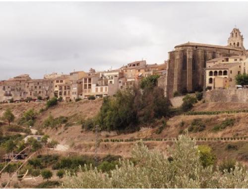 El Centre de Dia per a la gent gran d'Horta de Sant Joan rep set places publiques