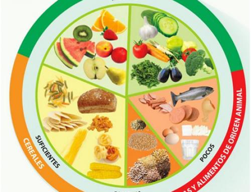 Nutrientes en la alimentación de las personas mayores