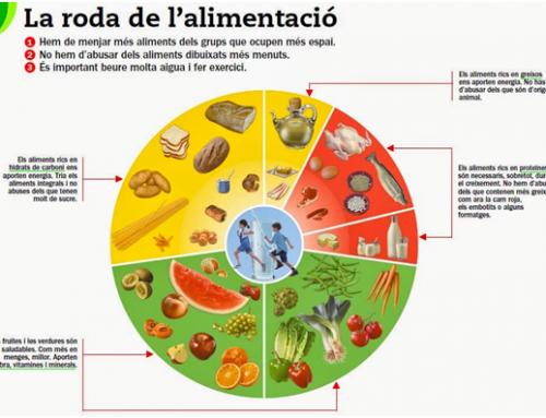 Nutrients en l'alimentació de les persones grans
