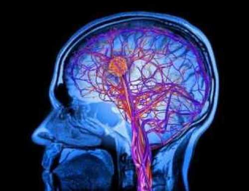 Busquen gent més gran de 60 anys per participar en un estudi sobre la deterioració cognitiva