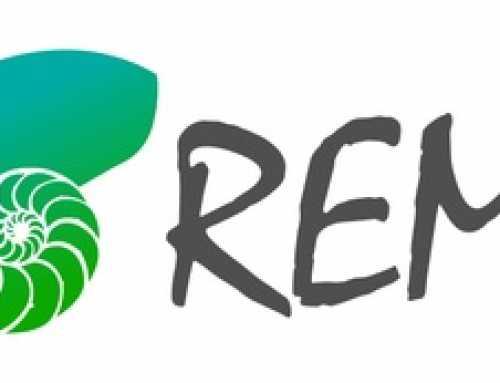 Presentació del programa REMI